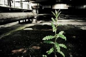 usine abandonnee